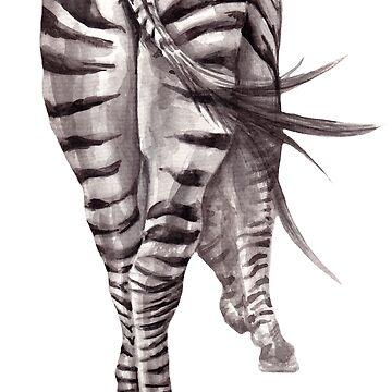 zebra. backside  by lisenok