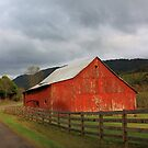 Red Barn in Poor Valley  by Linda Costello Hinchey