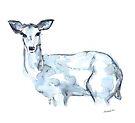 Deer by Kendra Shedenhelm