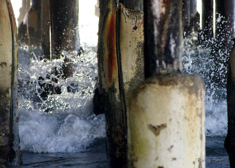 Beneath the Pier by Betsy  Seeton