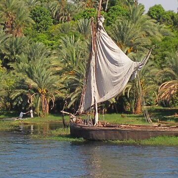 Nile River Scenery by Johnhalifax