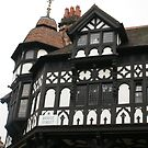 Chester, UK, half-timbered magnificence by BronReid