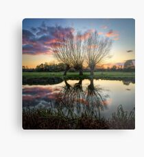 Autumn on the River Stour Metal Print