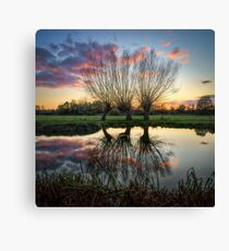Autumn on the River Stour Canvas Print