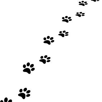 Pawprints by igorsin
