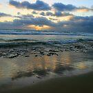 Point Lonsdale - Ocean Beach  by Susie Walker
