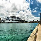 Sydney Harbour  by Michael  Bermingham