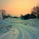 Road in the Snow by ienemien