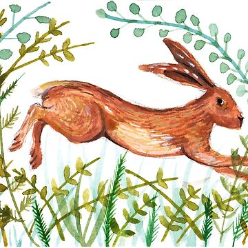 Leaping hare © BonniePortraits by BonniePortraits