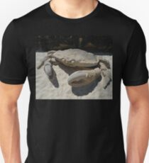 Crab @ Sculptures By The Sea 2010 Unisex T-Shirt