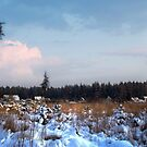 Snowy village in the forest  by Antanas