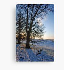 Britains Big Freeze-Snowy field at Dusk Canvas Print