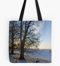 Britains Big Freeze-Snowy field at Dusk Tote Bag
