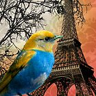 Bird Eiffel Tower and Tree Branches Damask by colormegirly
