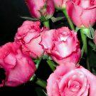 Pink Romance by Sviatlana
