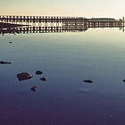 Old Jetty Grantville Westernport Bay c late 1800's 19870812 0007 by Fred Mitchell