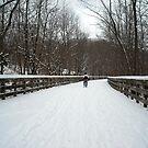 Let's Take a Walk by debbiedoda