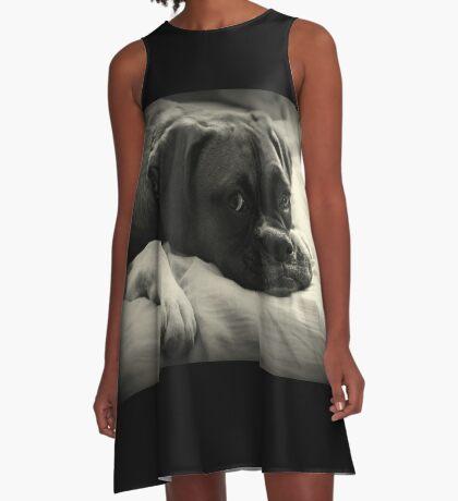 Zeit zum Ausruhen - Boxer Dog Series A-Linien Kleid