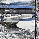 Winter Scene In Montgomery by Deborah  Benoit