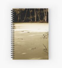 Mystifying Swamp  Spiral Notebook