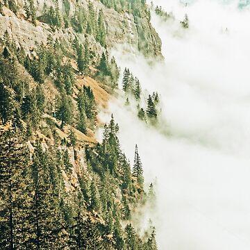 Hills & Fog by 83oranges