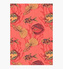 Fishes on living coral background Photographic Print