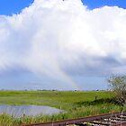 Rainbow On The Prairie by Barrie Daniels