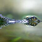 Periscope Eyes 2 by Frank Yuwono