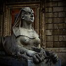 Opera Guard by raelynndesign
