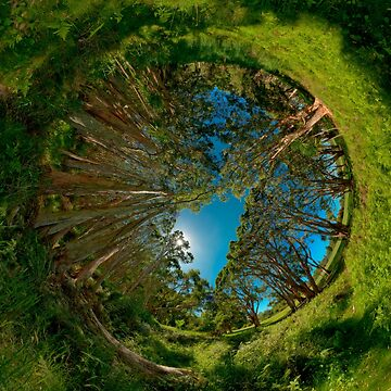 Stereographic view from Lachlan Swamp by eschlogl