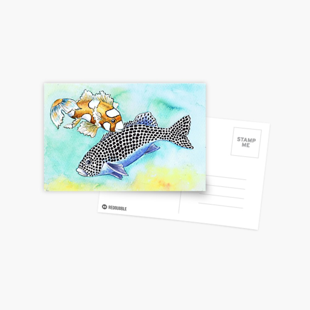 Postcards for the Reef 10: Harlequin Sweetlips, 2 generations Postcard