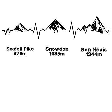Three Peaks ECG Light Version by eldram