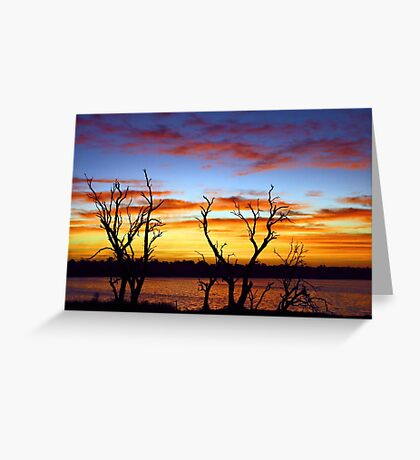 Yangebup Lake - Western Australia  Greeting Card