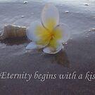 Eternity Begins by Melissa Park