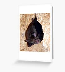 Bat 2 Greeting Card
