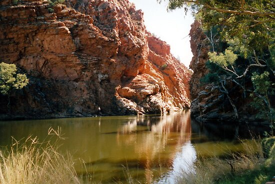 Ellery Creek Big Hole by Cheryl Parkes