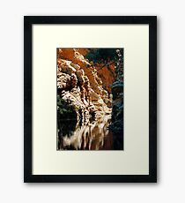 Ellery Creek Framed Print