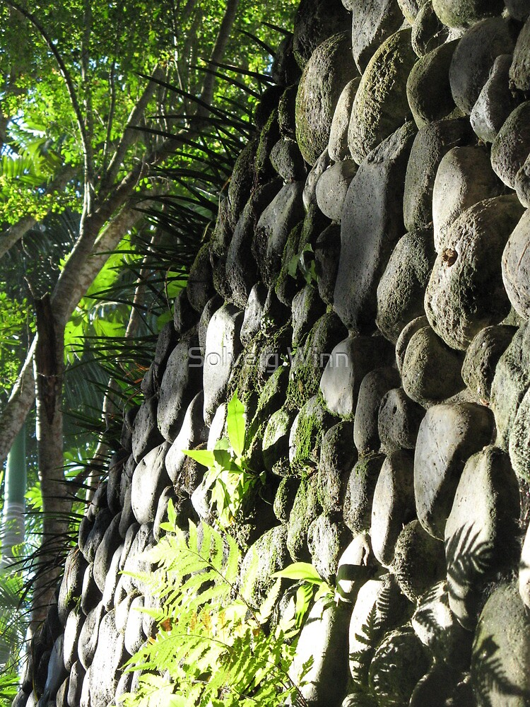 Bali - Rock Wall by soulimages