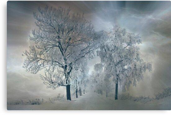 Winter's magic by Veikko  Suikkanen