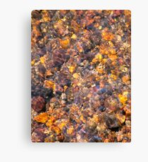Clear Water Flows Over Golden Brown Pebbles Stream Abstract Canvas Print