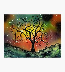 Tentacled Tree in Winter Photographic Print