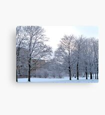 Wintery Suburbia Canvas Print