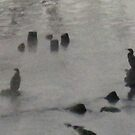 Great Cormorant freezing 1 by BrittArnhild