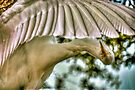 Under my wing by LudaNayvelt