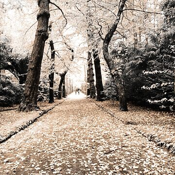 Terra Nostra Park by gavila