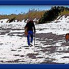 Beach Stroll by glink