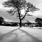 Tall Shadow by Chris Charlesworth