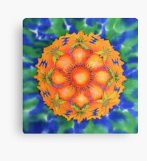 The Gradual Emergence of Tranquillity  Canvas Print