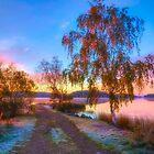 October Morning 17 by Veikko  Suikkanen