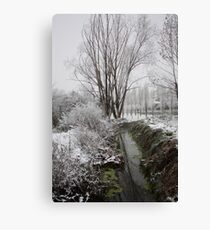 Winter Canvas Print